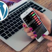 wordpress designers